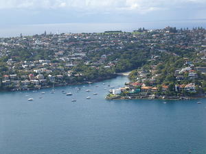 Parsley Bay and Dover Heights
